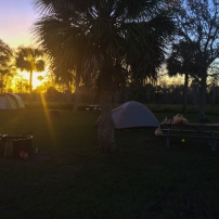 Big Cypress National Preserve - Camping
